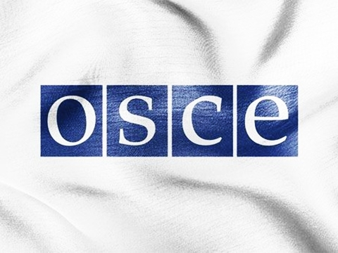 OSCE strongly concerned about Russia's recognition of DPR/LPR documents