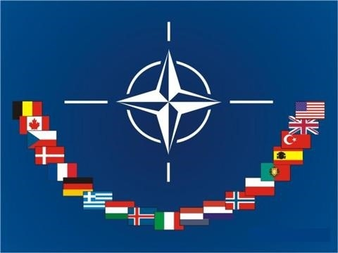 NATO 'takes note' of resumption of Ukraine's course towards Alliance membership