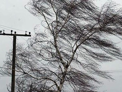 139 settlements in Lviv region de-energized because of bad weather