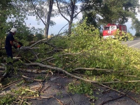 Devastating wind swept through Ivano-Frankivsk region